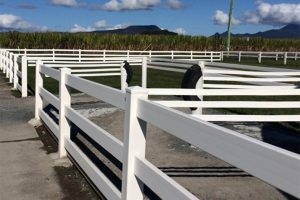post-rail-pvc-fencing13