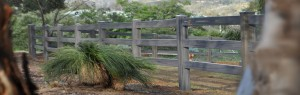 rural-fencing-page-title