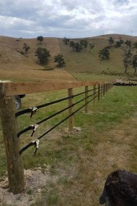 Equirail attached to post and rail fence