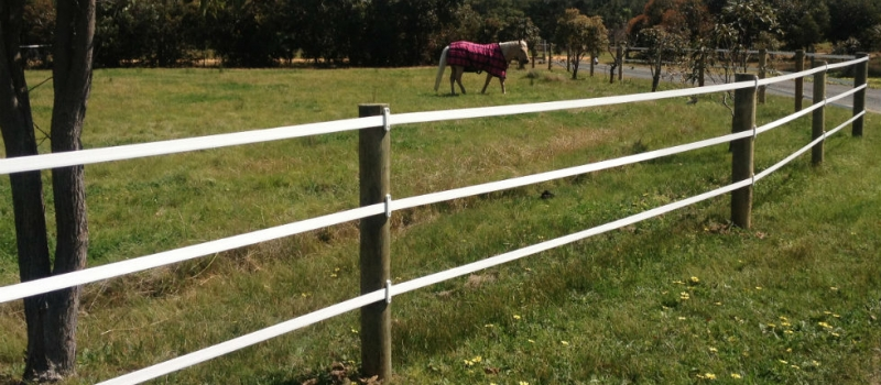 equirail-white-horse-fencing