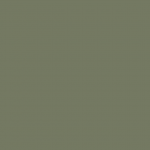 PVC fencing winter green swatch
